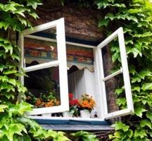 Спете на отворен прозорец за здраве